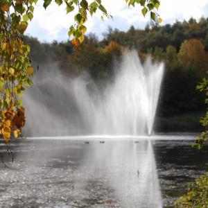 Europaweiher im Herbst (Foto: Hermann Öhmig)