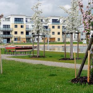 "Wohnbaugebiet ""Am Ballonstartplatz"" (Foto: Merk)"