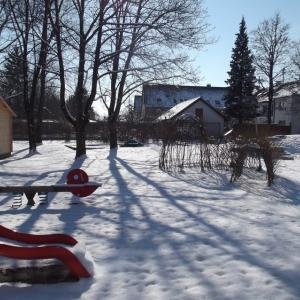 Garten (Foto: Bolin)